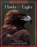 How to Spot Hawks and Eagles, Clay Sutton, 1576300005
