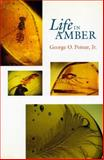 Life in Amber, Poinar, George O., Jr., 0804720010