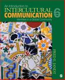 An Introduction to Intercultural Communication : Identities in a Global Community, Jandt, Fred E. and Jandt, Fred Edmund, 1412970105