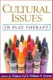 Cultural Issues in Play Therapy, Fiorello, Catherine A., 1593850123