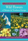 A Naturalist's Guide to the Wild Flowers of Britain and Northern Europe, Andrew Cleave, 1906780188