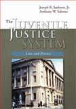 The Juvenile Justice System : Law and Process, Sanborn, Joseph B. and Salerno, Anthony W., 0195330188