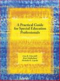 A Practical Guide for Special Education Professionals, Churchill, Lisa R. and Mulholland, Rita, 013172021X