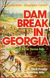 Dam Break in Georgia, K. Neill Foster, 0889650233