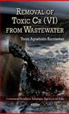 Removal of Toxic Cr(VI) from Wastewater, Tonni Agustiono Kurniawan, 1620810255