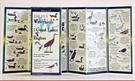 Sibleys Waterbirds of the Great Lakes Region, David Allen Sibley, 1935380273