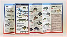 Ultimate GT Fishes of the Great Lakes Region, Robert G. Werner, 1935380281