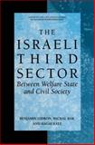 The Israeli Third Sector 9780306480287