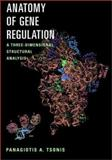 Anatomy of Gene Regulation : A Three-Dimensional Structural Analysis, Tsonis, Panagiotis A., 0521800307