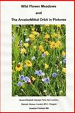 Wild Flower Meadows and the ArcelorMittal Orbit in Pictures, Llewelyn Pritchard, 1493760319