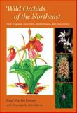 Wild Orchids of the Northeast : New England, New York, Pennsylvania, and New Jersey, Brown, Paul Martin, 081303034X