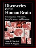 Discoveries in the Human Brain : Neuroscience Prehistory, Brain Structure, and Function, Marshall, Louise H. and Magoun, Horace W., 1617370347
