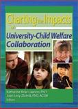 Charting the Impacts of University-Child Welfare Collaboration, Katharine Briar-Lawson, Joan Levy Zlotnik, 0789020351