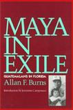 Maya in Exile : Guatemalans in Florida, Burns, Allan F., 1566390362