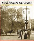 Madison Square, Miriam Berman, 1586850377