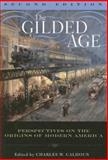 The Gilded Age 2nd Edition