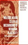 Molecular and Cellular Mechanisms of Neuronal Plasticity 9780306460401