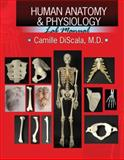 Human Anatomy and Physiology Lab Manual, Discala, Camille, 0757560407