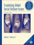 Examining Global Social Welfare Issues Using MicroCase, Version II, Cherry, Andrew L., 0534610412