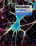 Neuroscience at a Glance 9781405150453