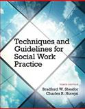 Techniques and Guidelines for Social Work Practice with Pearson EText -- Access Card Package 10th Edition