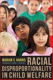 Racial Disproportionality in Child Welfare 9780231150477