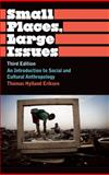 Small Places, Large Issues : An Introduction to Social and Cultural Anthropology, Eriksen, Thomas Hylland, 0745330495