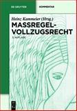 Massregel Vollzugsrecht 9783899490497