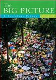 The Big Picture : A Sociology Primer, Witt, Jon, 0072990538