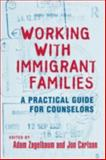 Working with Immigrant Families : A Practical Guide for Counselors, , 0415800617