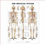 The Skeletal System, Anatomical Chart Company Staff, 1587790629