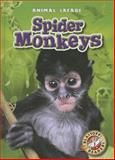 Spider Monkeys, Megan Borgert-Spaniol, 1626170649