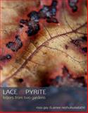 Lace and Pyrite, Nezhukumatathil, Aimee and Gay, Ross, 0982710666