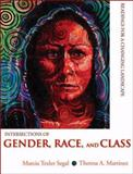 Intersections of Gender, Race, and Class : Readings for a Changing Landscape, Segal, Marcia Texler and Martinez, Theresa A., 0195330676