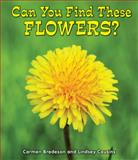 Can You Find These Flowers?, Carmen Bredeson and Lindsey Cousins, 1464400679