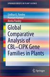 Global Comparative Analysis of CBL-CIPK Gene Families in Plants, Pandey, Girdhar K. and Kanwar, Poonam, 3319090771