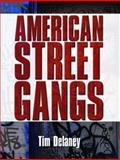American Street Gangs, Delaney, Tim, 0131710796