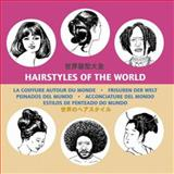 Hair Styles 10, 000 Bc-1900 Ad, Pepin Van Roojen, 9054960825