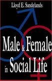 Male and Female in Social Life, Sandelands, Lloyd E. and Sandelands, Lloyd, 0765800837