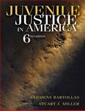 Juvenile Justice in America 6th Edition