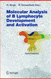 Molecular Analysis of B Lymphocyte Development and Activation, , 3540230904