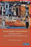 Social Rights Jurisprudence : Emerging Trends in International and Comparative Law, , 0521860946