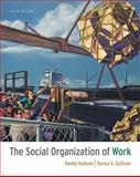 The Social Organization of Work 9781111300951