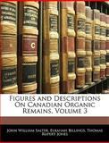 Figures and Descriptions on Canadian Organic Remains, John William Salter and Elkanah Billings, 1144091004