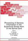 Processing of Sensory Information in the Superficial Dorsal Horn of the Spinal Cord, F. Cervero, G. J. Bennett, P. M. Headley, 1461281016