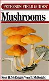Field Guide to Mushrooms : North America, McKnight, Kent H. and McKnight, Vera B., 0395421020