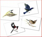 Boxed Greeting Card Set - Birds, up240, 0974751057
