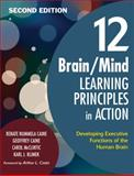 12 Brain/Mind Learning Principles in Action : Developing Executive Functions of the Human Brain, , 1412961076