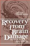 Recovery from Brain Damage, , 0306311070