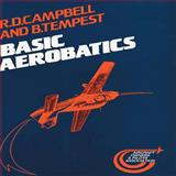 Basic Aerobatics, R. D. Campbell and B. Tempest, 1853101087